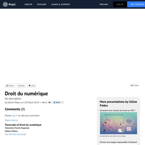 Droit du numérique by Céline Fédou on Prezi