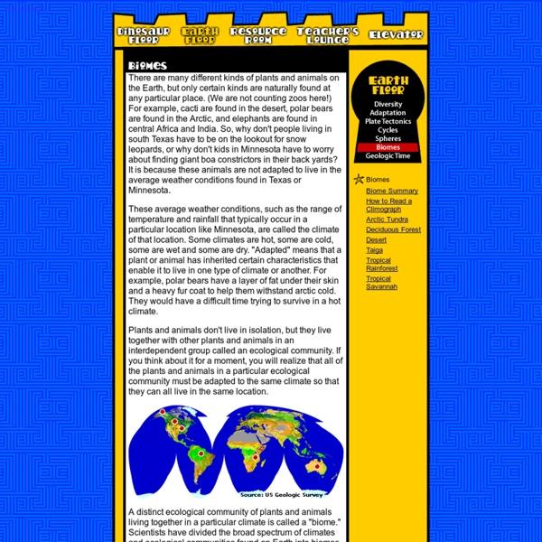 Earth Floor: Biomes