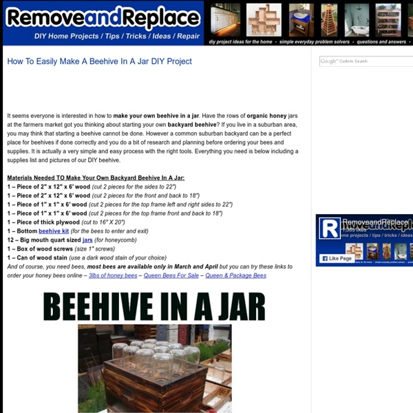 How To Easily Make A Beehive In A Jar DIY Project