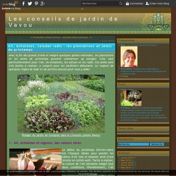 Ail, échalotes, salades radis : les plantations et semis de printemps