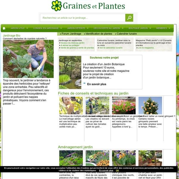 Echange de graines, troc aux plantes et boutures