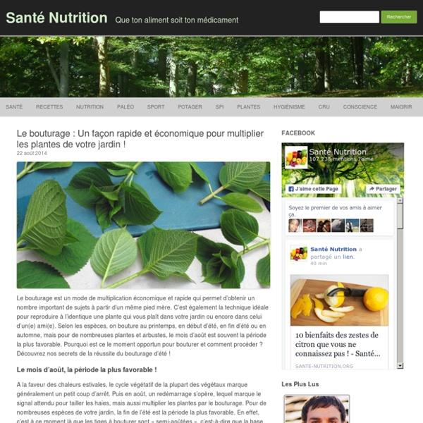Le bouturage : Un façon rapide et économique pour multiplier les plantes de votre jardin