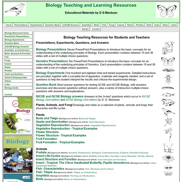 Articles about learning
