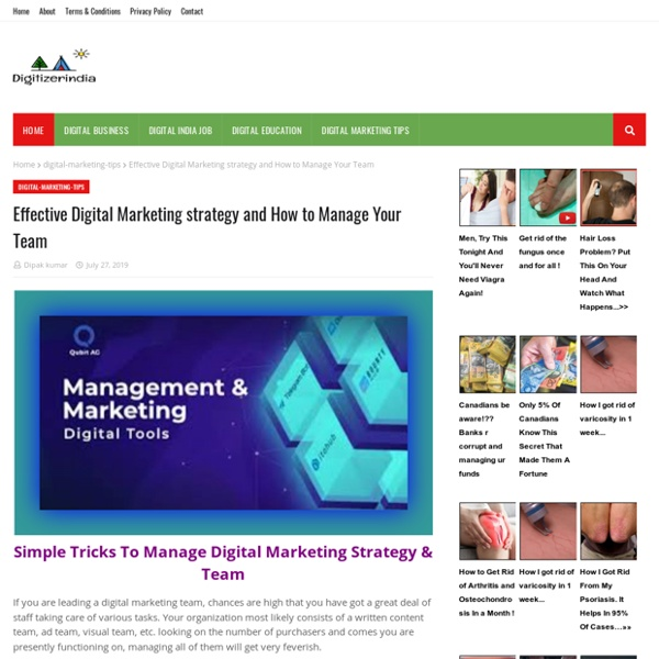 Effective Digital Marketing strategy and How to Manage Your Team