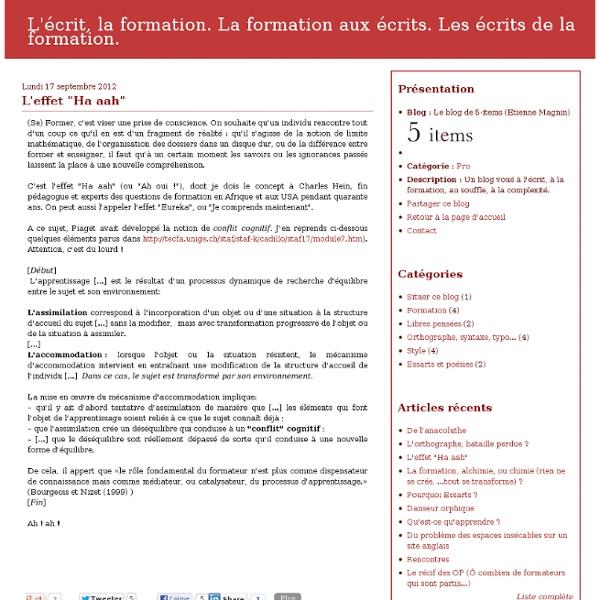 """L'effet """"Ha aah"""" - Le blog de 5-items (Etienne Magnin)"""