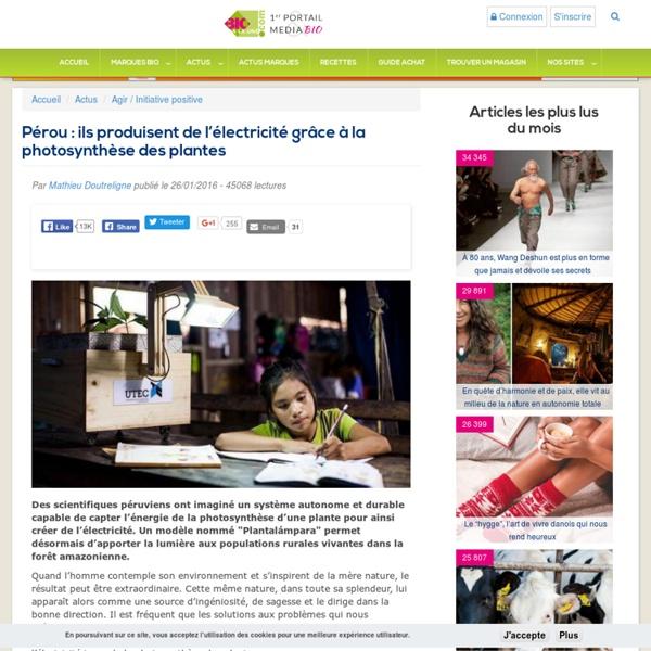 Pérou : ils produisent de l'électricité grâce à la photosynthèse des plantes