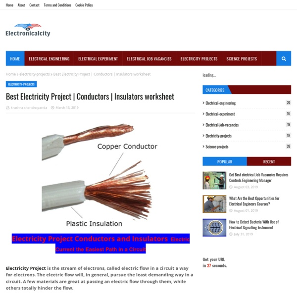 Best Electricity Project