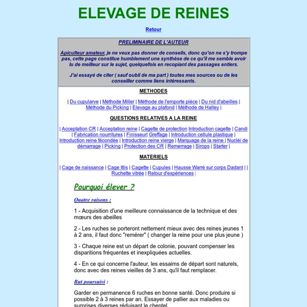 ELEVAGE DE REINES SOUS CADRE