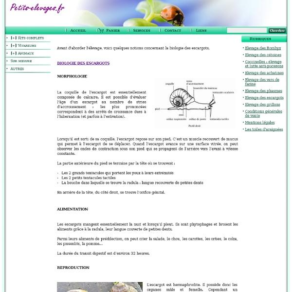 Elevage des escargots www.petits-elevages.fr