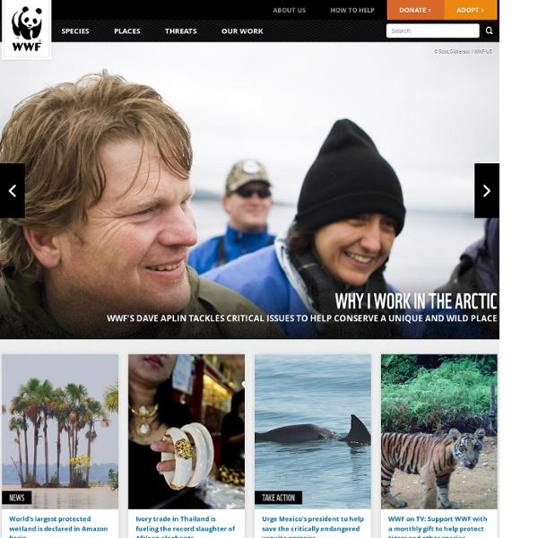 WWF - Endangered Species Conservation