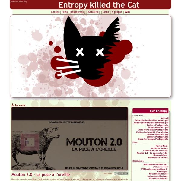 Entropy killed the Cat - Le cinéma libre en ébullition