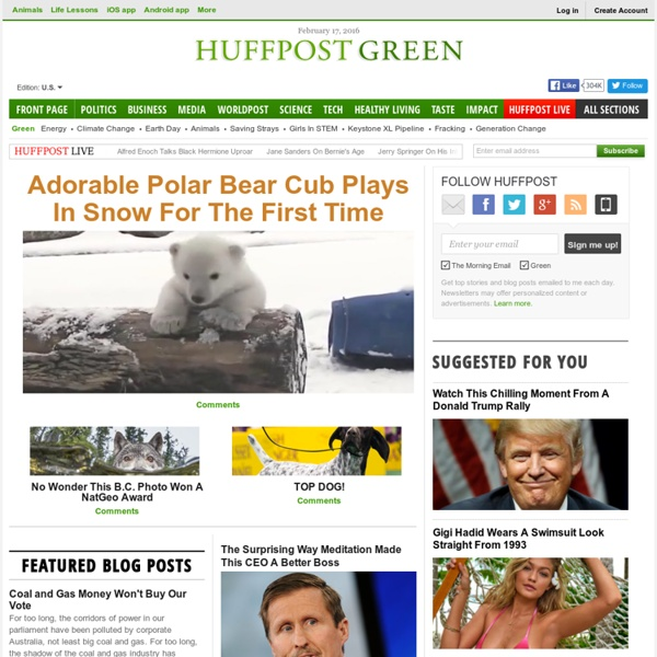 Green News, Energy, Environment, Animals, Climate Change, Extreme Weather - HuffPost Green