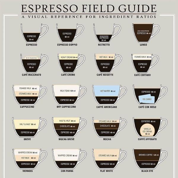 Espressoguide.jpg (JPEG Image, 908×1135 pixels)