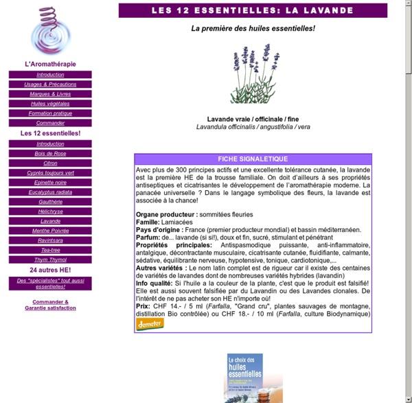Les 12 huiles les plus essentielles: la lavande officinale (lavandula officinalis)