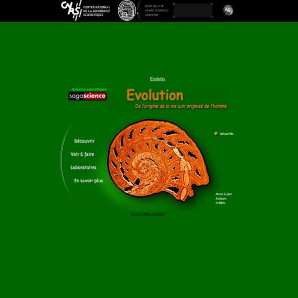 Evolution, de l'origine de la vie aux origines de l'homme - CNRS - Sagascience
