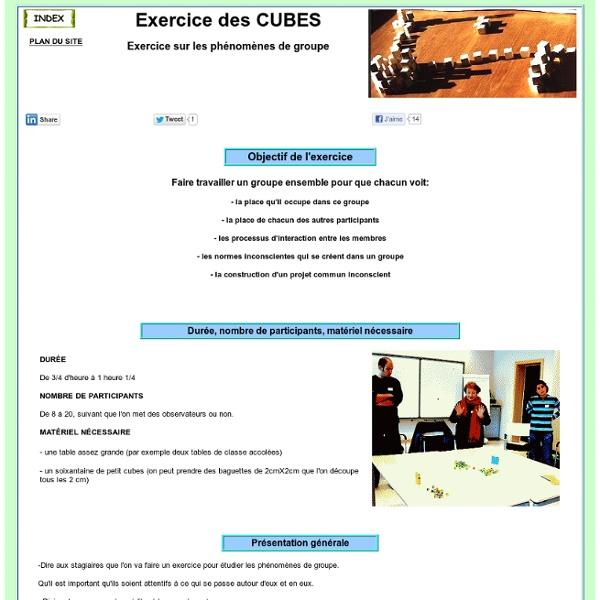 Cubes : Exercice de formation pour animation de groupes