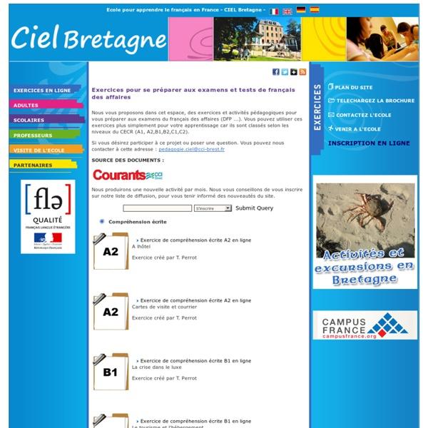 Exercices pour se préparer aux examens et tests de français des affaires : DFP, FDA