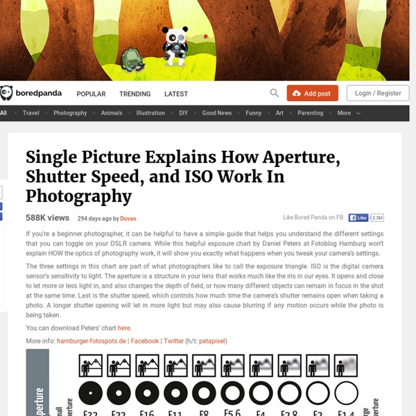 Single Picture Explains How Aperture, Shutter Speed, and ISO Work In Photography
