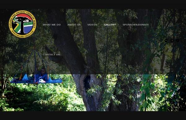 EXPLORE TREES