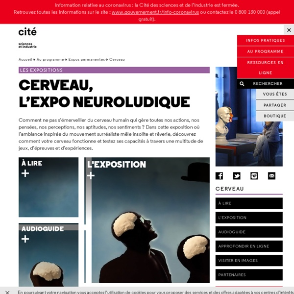 Cerveau - Expos permanentes d'Explora