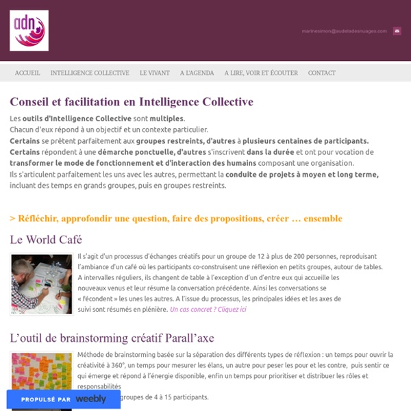 Conseil et facilitation en Intelligence Collective - www.audeladesnuages.com