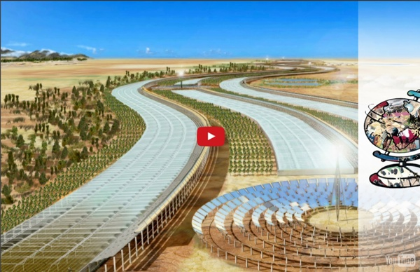How Qatar Plans to Turn the Desert Green