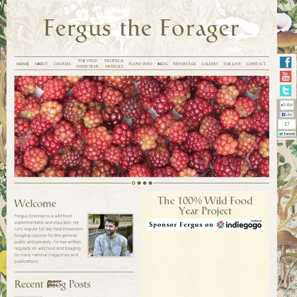 Fergus The Forager: Plant Info, Recipes, Articles, Etc.