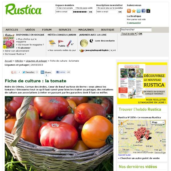 Fiche de culture : la tomate