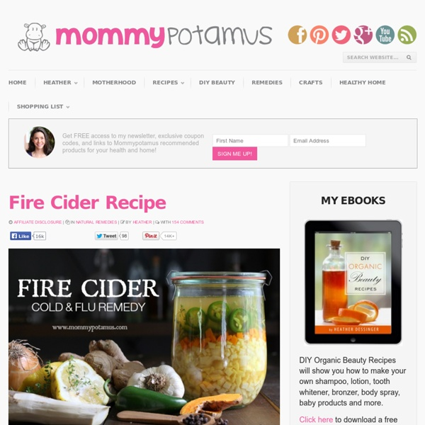 Fire Cider RecipeMommypotamus
