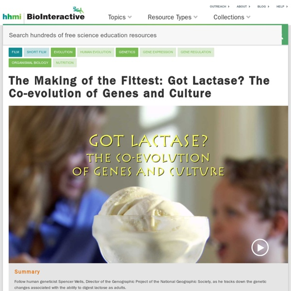 The Making of the Fittest: Got Lactase? The Co-evolution of Genes and Culture