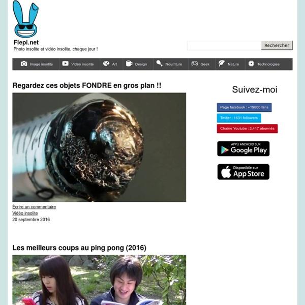 Flepi.net - Image insolite et vidéo insolite, chaque jour !