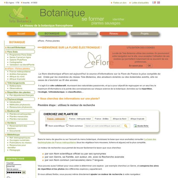 Flores en ligne. tela botanica .