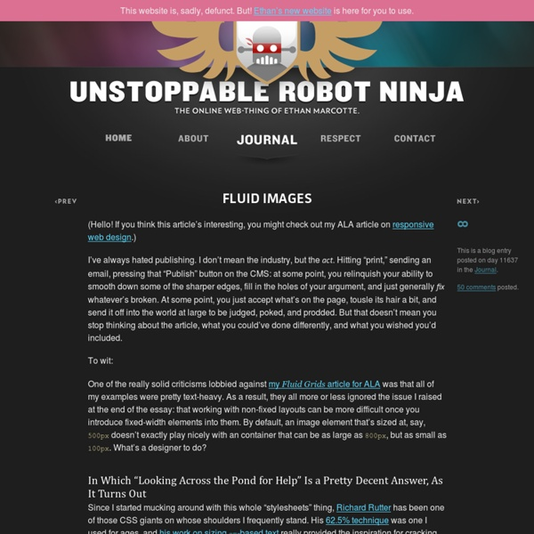 Fluid Images — Unstoppable Robot Ninja