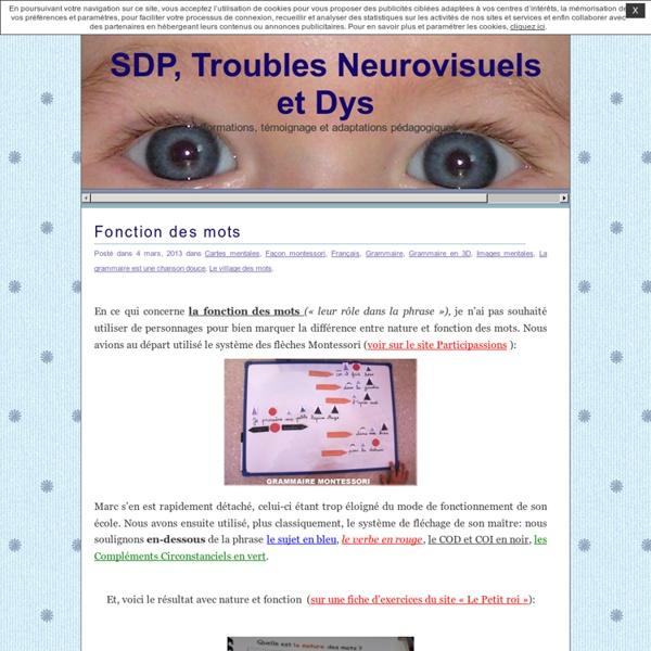 Troubles Neurovisuels, SDP et Dys » Fonction des mots