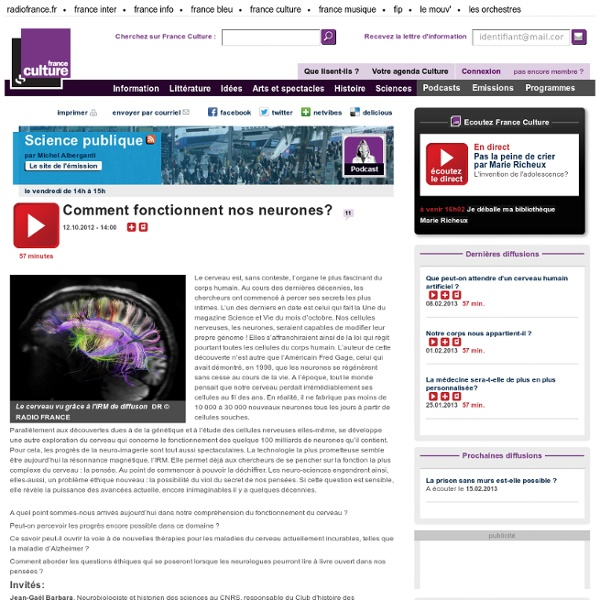 Comment fonctionnent nos neurones? - Sciences