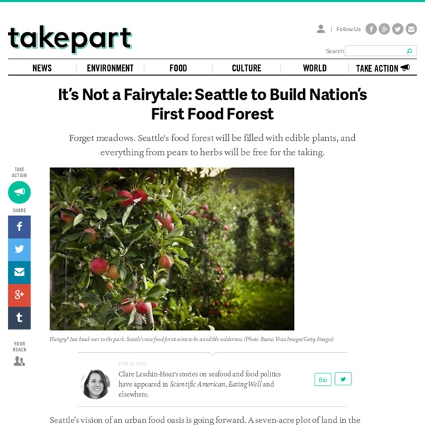 It's Not a Fairytale: Seattle to Build Nation's First Food Forest