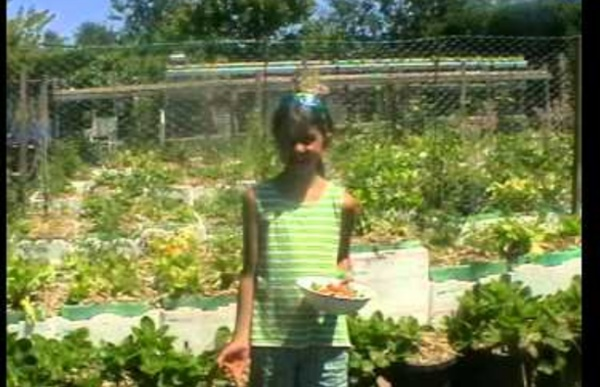 From Bare Dirt To Abundance - A Year In The Life Of The Love For Life Food Forest