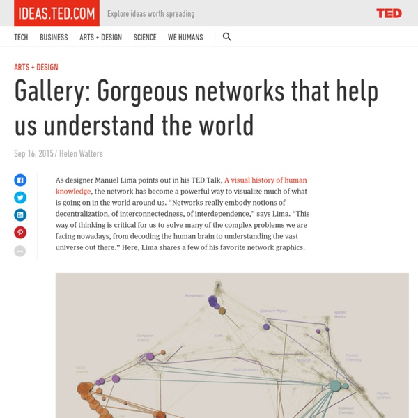 Gallery: How networks help us understand the world