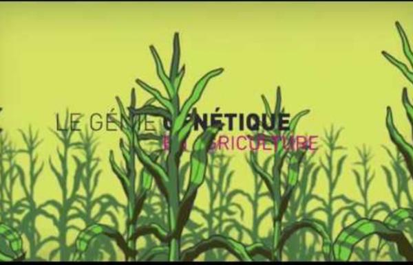 Le génie génétique en agriculture