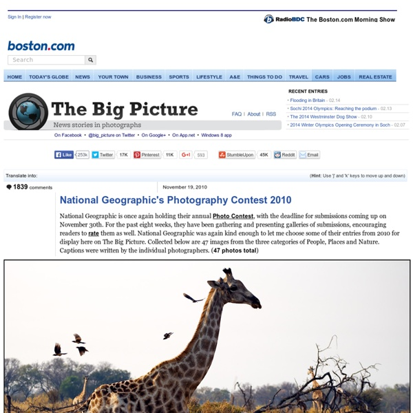 National Geographic's Photography Contest 2010 - The Big Picture