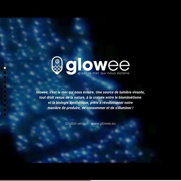 Glowee, c'est la mer qui nous éclaire