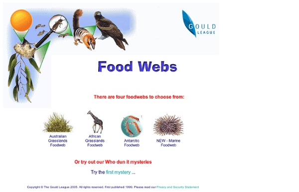 Gould League - Food Webs - build your own