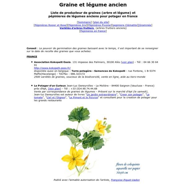 Graine et légume ancien