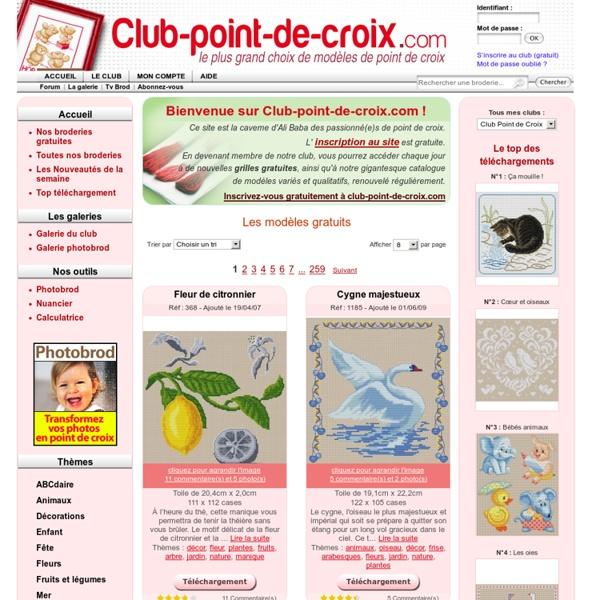 Club point de croix