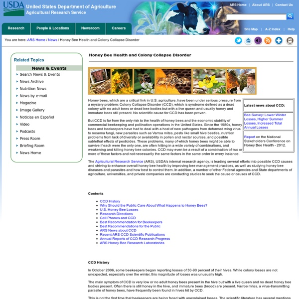 USDA 25/03/13 Honey Bees and Colony Collapse Disorder - 2012 CCD Progress Report