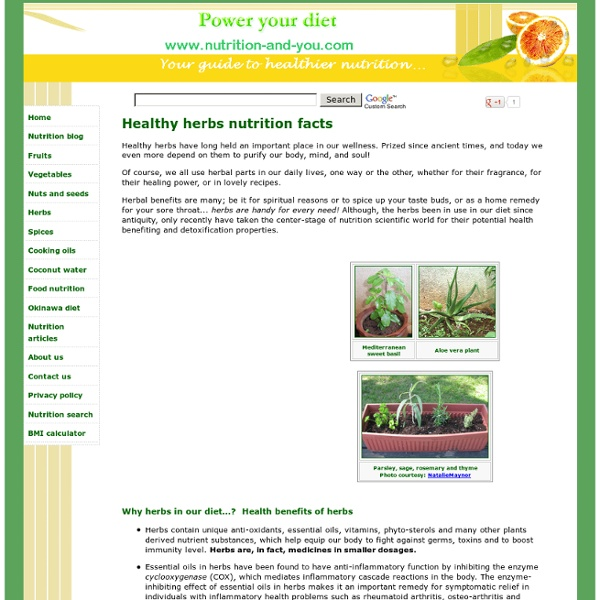 Healthy herbs nutrition facts and the health benefits of herbs