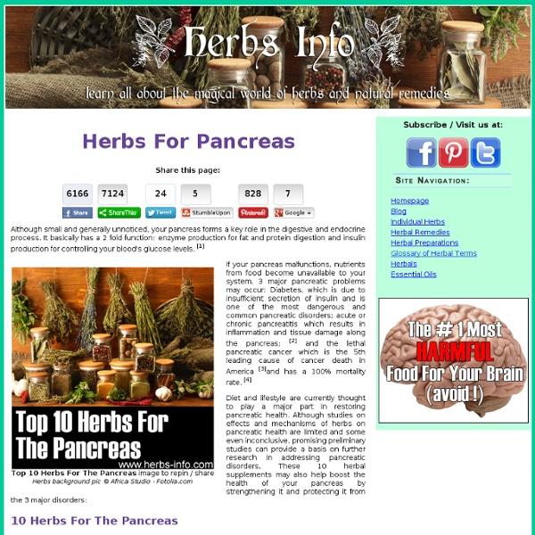 Herbs For Pancreas