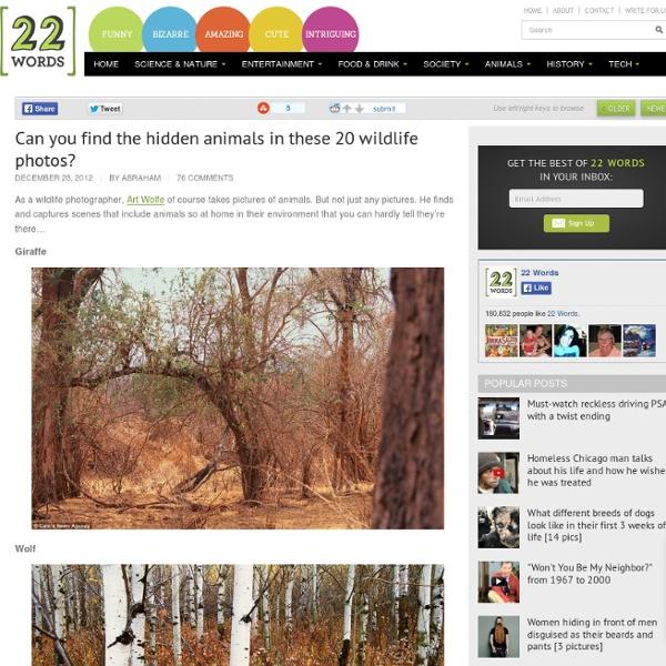 how to find hidden photos