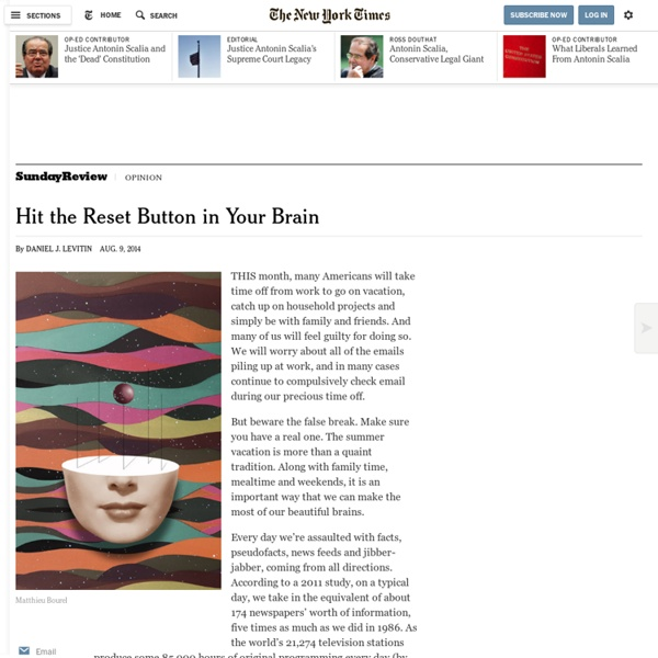 Hit the Reset Button in Your Brain
