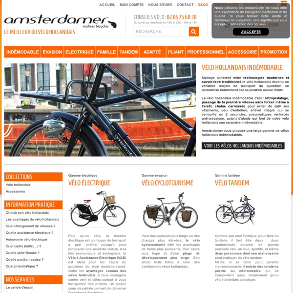 Velo hollandais electrique, triporteur, tandem, ville, cyclotourisme, pliant,Amsterdamer